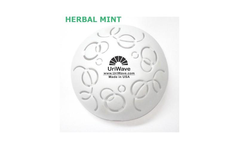 Intensity Herbal Mint - 12 Stück